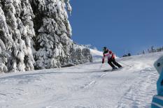 DSV_Schuelercup_Ski_Alpin_Technikbewerb_Westendorf_BR_DSV