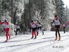 Deutschen Seniorenmeisterschaften 2013