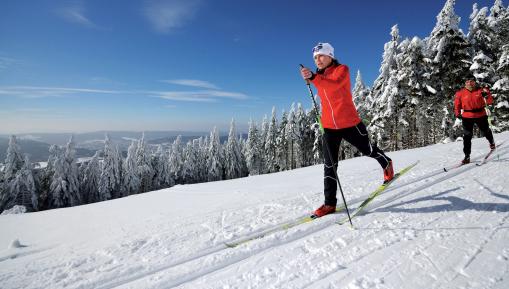 Skiwanderwegs Rennsteig/Thüringer Wald