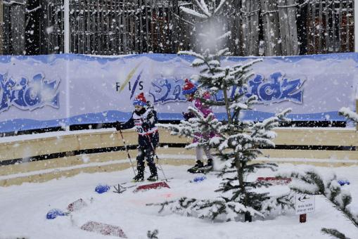 DSV-Nachwuchsprojekt, FIS World Snow Day