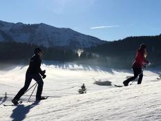 DSV nordic aktiv Ausbildungszentrum Bayern, Ausbildung zum g. e. t. Schneeschuhwalking Präventionstrainer