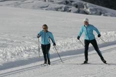 Skilanglauf-Techniken